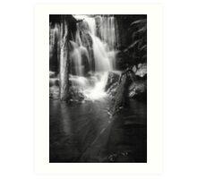 Lillydale Falls B&W Art Print