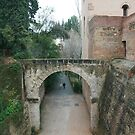 The Alhambra by styles