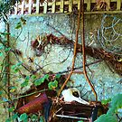 rusty old lawn mower by robinof