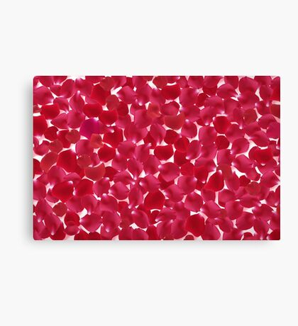 Modern Art Smart and Stylish Rose Petals Canvas Print
