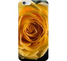 Backlit Yellow Rose iPhone Case/Skin