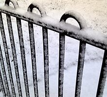 Snow Railing by swagman