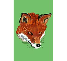 Sly as a Fox Photographic Print