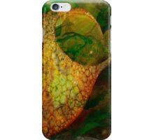 The Atlas Of Dreams - Color Plate 46 iPhone Case/Skin