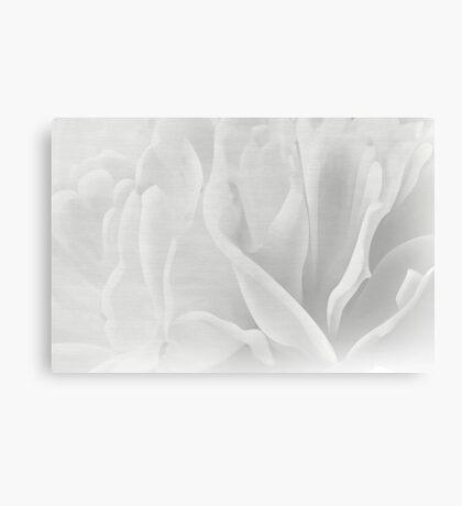 Modern Art Smart Stylish Wall Art Mono Flower Bloom Canvas Print