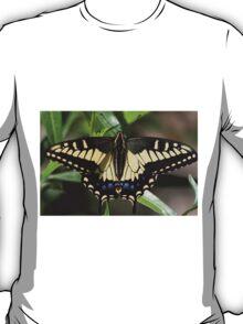 A Swallow's Art T-Shirt