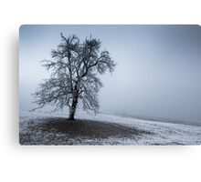 dark winter tree Canvas Print