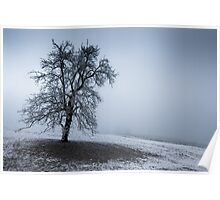 dark winter tree Poster