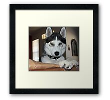 Look at me... Framed Print