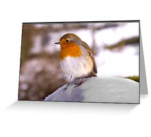 Robin in the snow at Bolton Abbey Greeting Card
