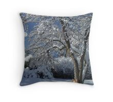 Prayers For The Animals  Throw Pillow