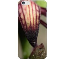 Pyrorchis Nigricans  iPhone Case/Skin