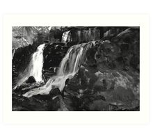 NATURE WITHOUT COLOR Art Print