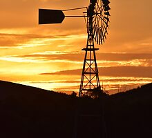 Windmill Sunset by forgantly