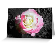 Rose :: Colorized Greeting Card