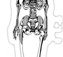 Robot Skeleton Sticker