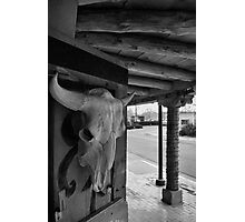 Rattlesnake Museum, Old Town, Albuquerque Photographic Print