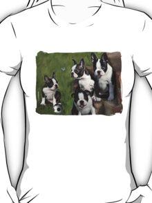 Boston Terrier Puppies... T T-Shirt