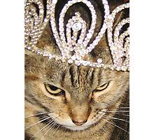 Darla in a tiara Photographic Print