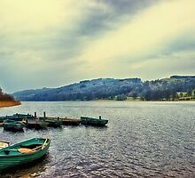 Boats on Esthwaite by Vicki Field