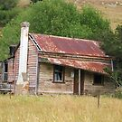 Taihape Cottage by niggle