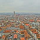 Birdseye view of Bruges by DES PALMER