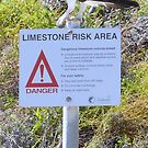 osprey on a sign by robinof