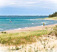Summer Afternoon on the Lake by Debra Schmidt