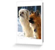 Jello and Vanille Greeting Card
