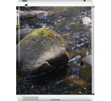 Granite Strong iPad Case/Skin
