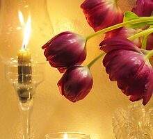 Candles and Tulips by MichelleR
