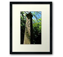 Saruman's Tower Framed Print