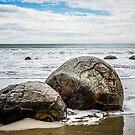 Moeraki Boulders  by DebbyScott