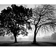 foggy duo Photographic Print