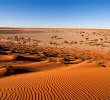 Desert Dunes by Overlander4WD
