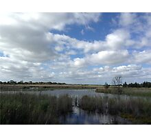 Tranquility of the Wetlands  Photographic Print