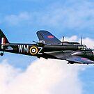 Fairchild Bolingbroke IVT G-BPIV Z5722/WM-Z by Colin Smedley