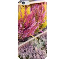 Shop shelves with blooming heather iPhone Case/Skin