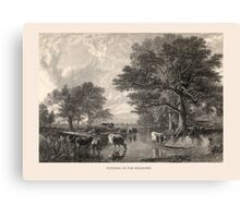 Evening in the Meadows Canvas Print