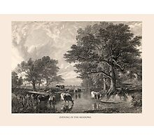 Evening in the Meadows Photographic Print