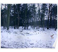 Carpet of Snow Poster