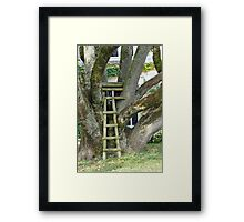 One Floor Up, Great Views Framed Print