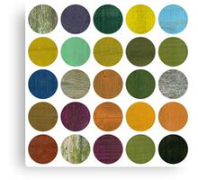 Rustic Rounds 6.0 Canvas Print