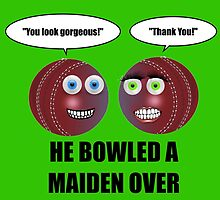He Bowled A Maiden Over! by DolceandBanana