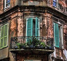 Old and Weathered by Judy Vincent