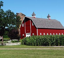 BROUSES BARN by Larry Trupp