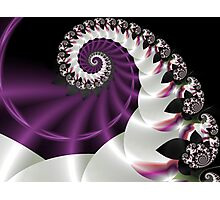 Spiral Passion Photographic Print