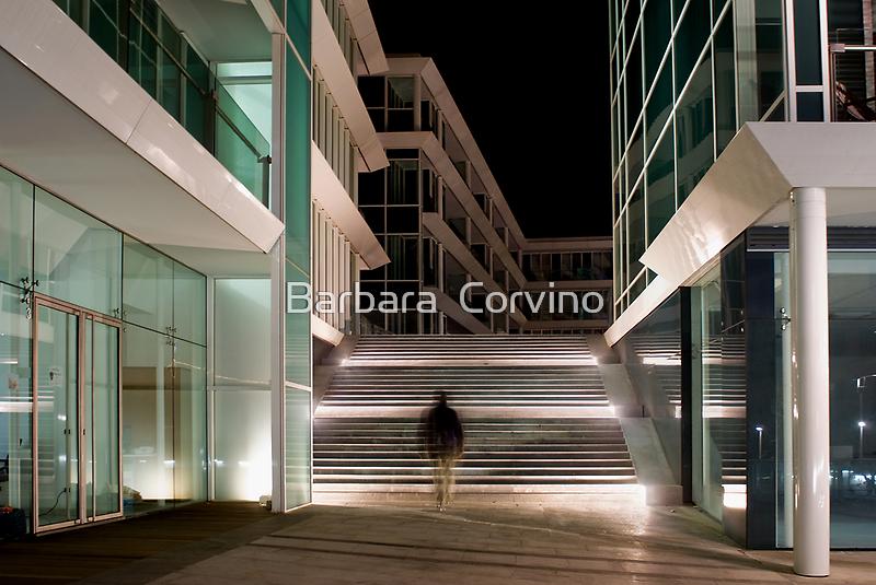 The visitor by Barbara  Corvino