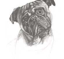 Smeagol the Pug by ImogenSmid