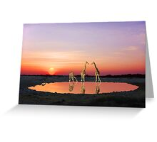 SUNSET WITH GIRAFFES 2 Greeting Card